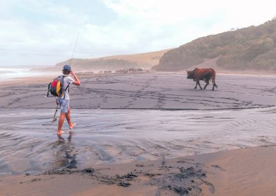 Fisherman and cow L